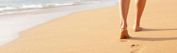 Busca tu hotel, viaje, playa, destino...